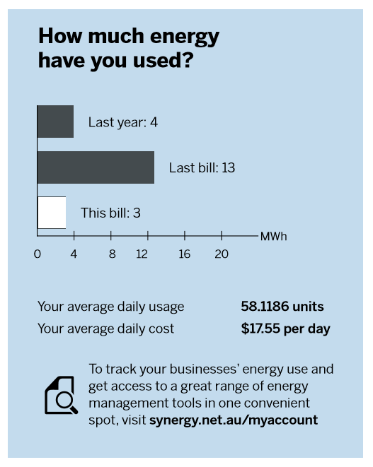 An estimated read will be indicated by a white horizontal bar in the 'How much energy have you used?' chart